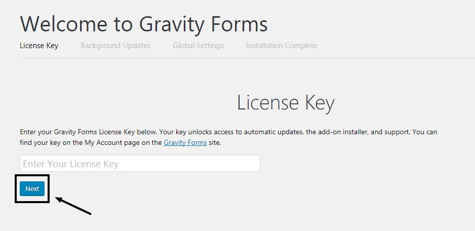 Bypass License key in gravity forms